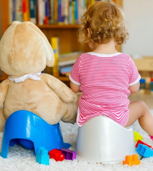 10 dolog, ami segít a szobatisztaságra szoktatásban