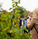 Miért hasznos a gyerekeknek a kertészkedés?