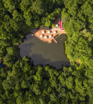 Meddőség ellen a természet erejével